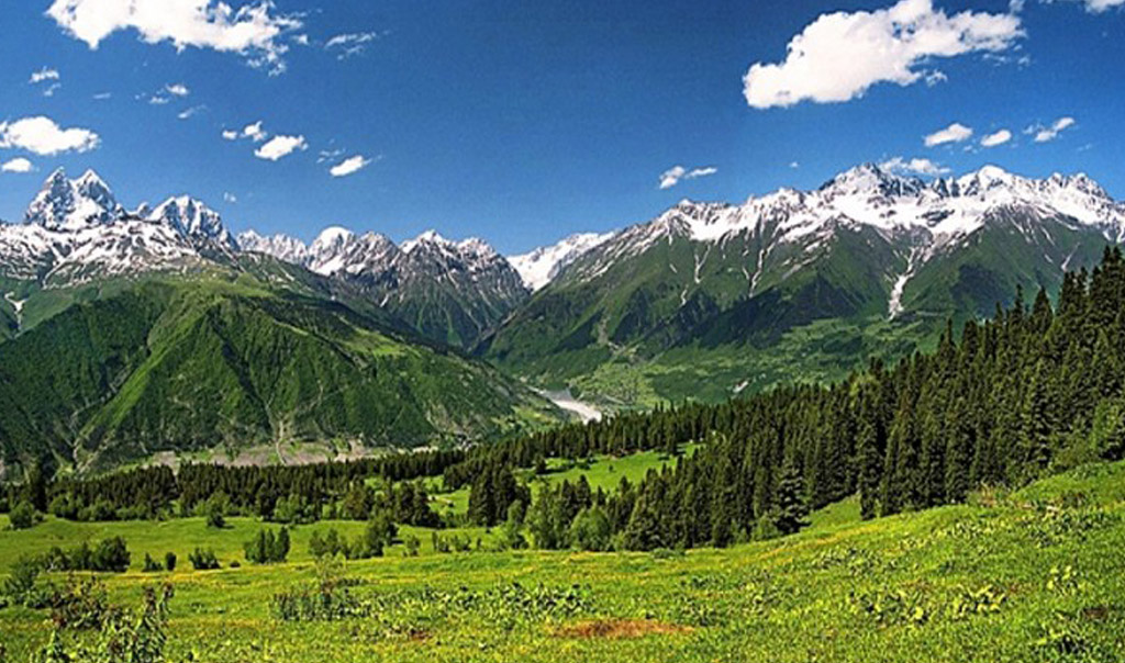 Северо-Осетинский
