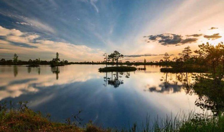 Крупнейший верховой болотный комплекс в Беларуси и центральной Европе – болото Ельня.