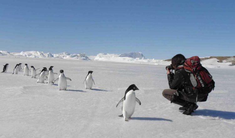В окрестностях российской антарктической полярной станции «Мирный».