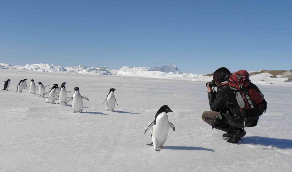 В окрестностях российской антарктической полярной станции «Мирный». Фотография участника 55-й РАЭ Д. Дорофеева.