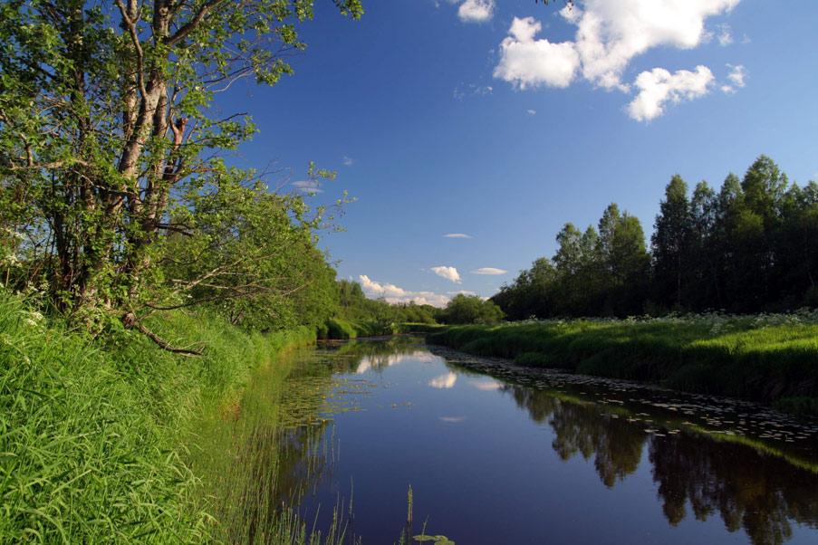 Центрально-Лесной государственный природный биосферный заповедник, Россия.