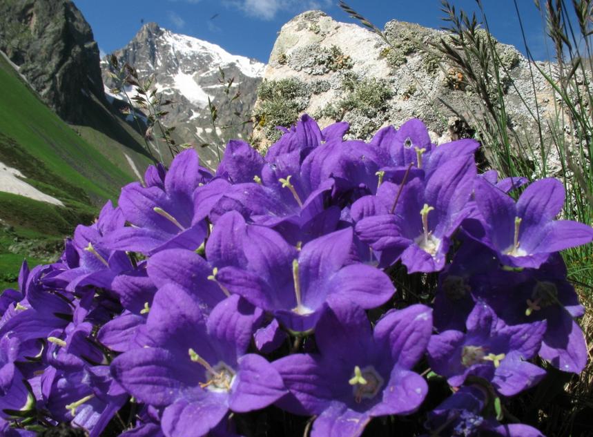 Национальный парк «Алания», Россия. Фотография с сайта парка., http://npalania.ru.