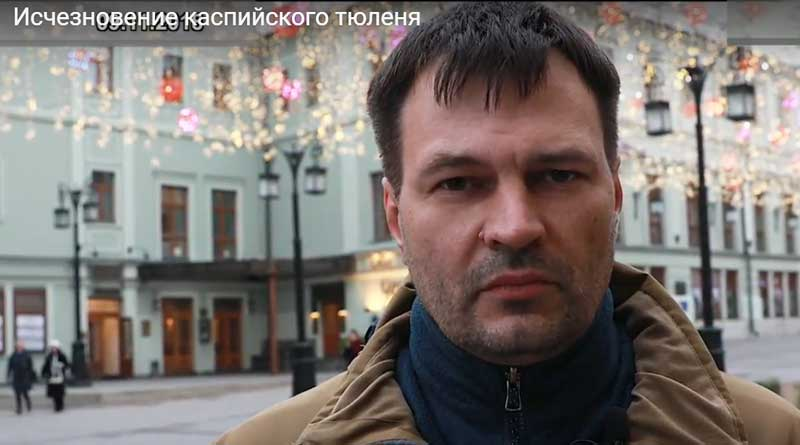 Deputy Chairman of the Marine Mammals Council Dmitry Glazov