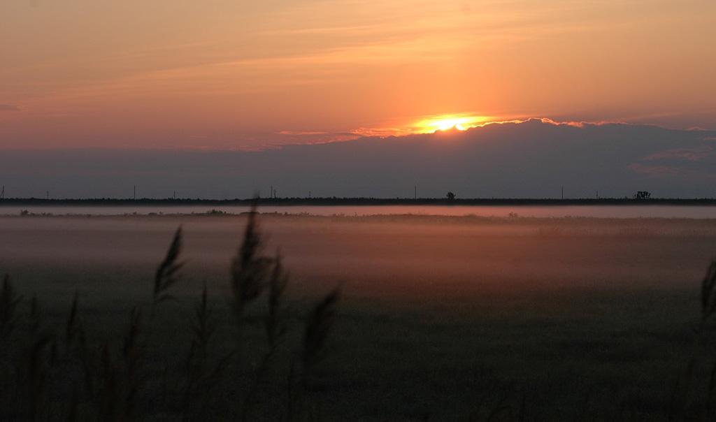 Рассвет на болотах. Муравьевский парк устойчивого природопользования, Россия. Фотография © Андреаса Сайгмунда, http://www.amurbirding.blogspot.ru.