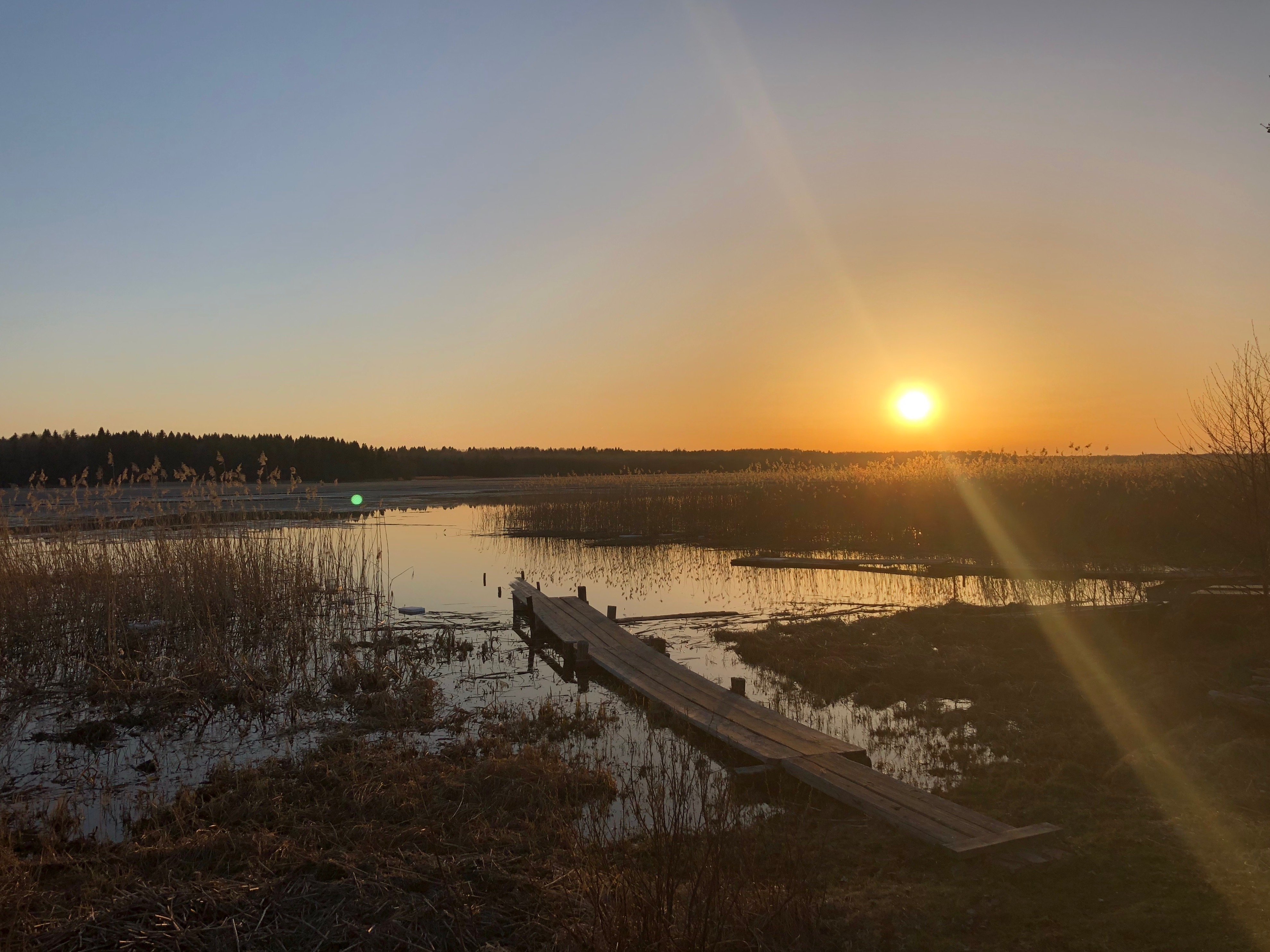 Шиляково. Национальный парк «Русский Север», Россия. Фотография Губайдуллиной Н.
