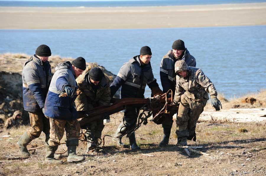 Экологическая экспедиция на о. Белый, 2014 г. Из фотоальбома Green Arctic, http://vk.com/album-77006679_206447649.