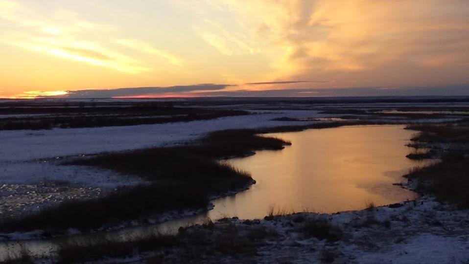 Муравьевский парк устойчивого природопользования, Амурская область, Россия.