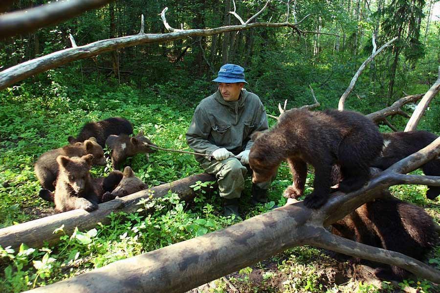 На Биологической станции «Чистый лес», Россия. Фотография с сайта биостанции.