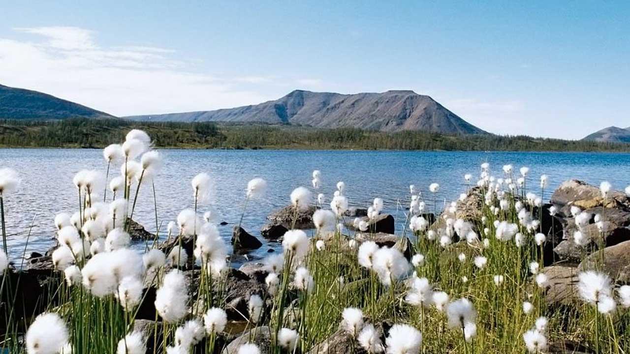 На озере Лама. Фотография Алексея Дисертинского, http://rgo-sib.ru/reportage/433.htm