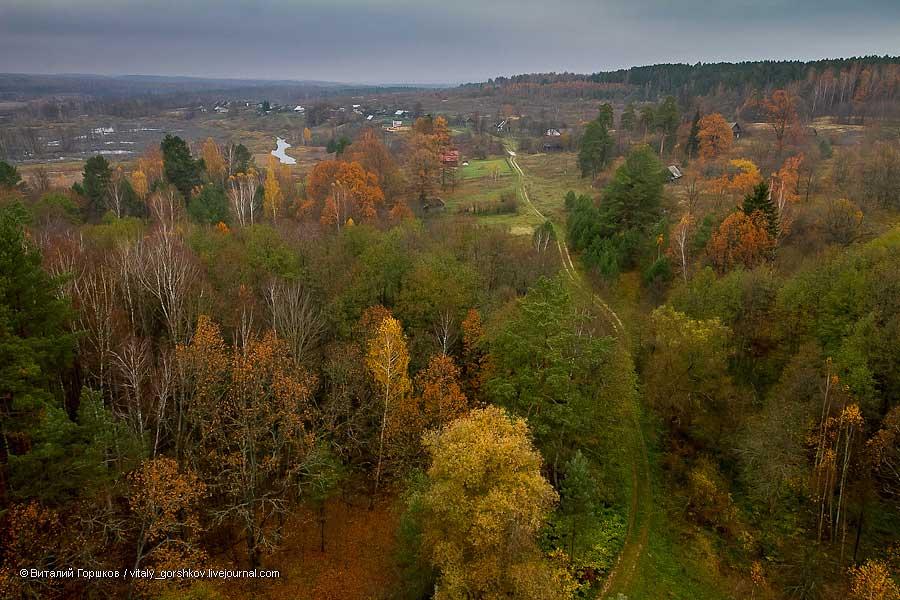 Осень. Заповедник «Калужские засеки», Россия. Фотография Виталия Горшкова.