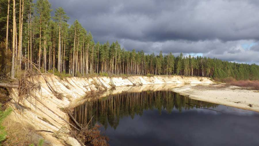 Государственный природный биосферный заповедник «Керженский», Россия. Фотография предоставлена Олегом Синцовым.