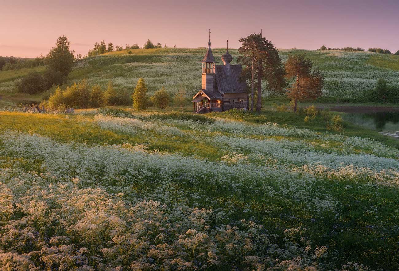 «Вот стоишь над Кенозером на холме, вдыхаешь запах этих чудесных летних трав и чувствуешь, что ты в таком родном и близком душе месте». Фотография Даниила Коржонова: http://nikonofficial.livejournal.com/169270.html.